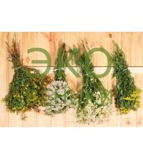 Травы для бани