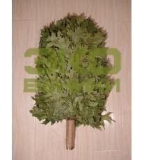 Веник из Канадского дуба (красный дуб)